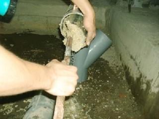 Những điều cần tìm hiểu khi chống thấm nhà vệ sinh